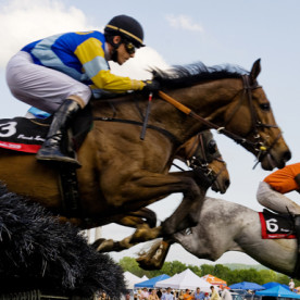 Gearing Up for the Iroquois Steeplechase