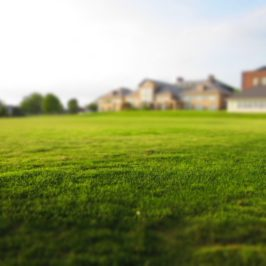 Buying a Home in Summer: Pros and Cons